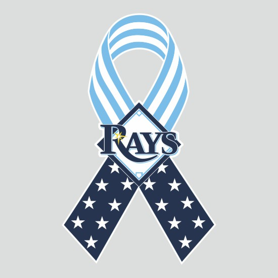 Tampa Bay Rays Ribbon American Flag logo iron on sticker