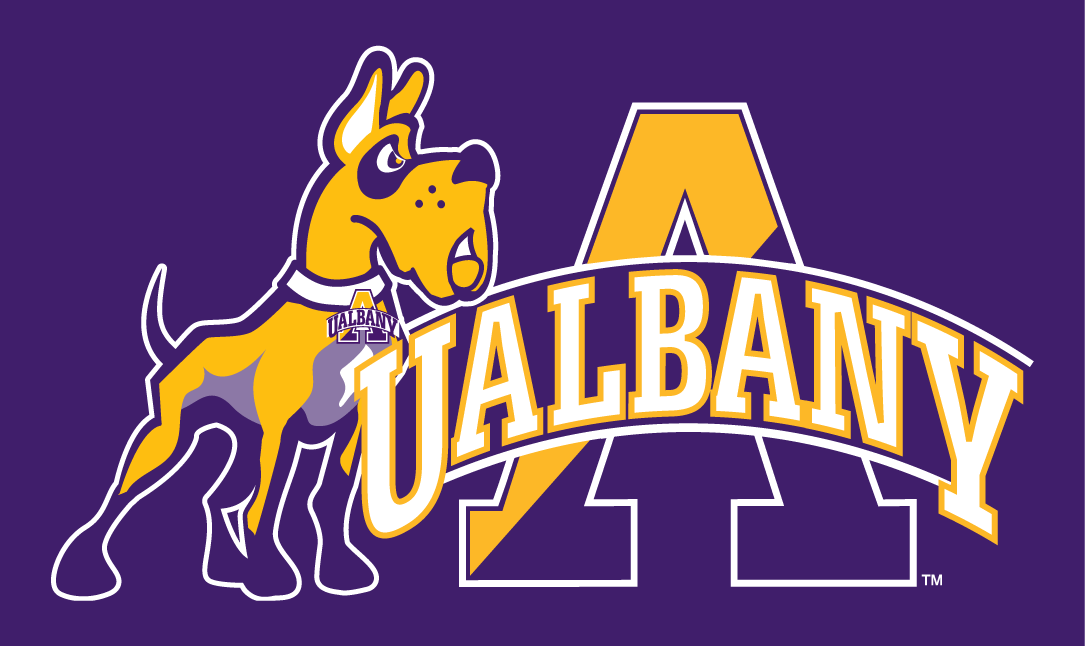 Albany Great Danes 2008-Pres Alternate Logo 03 iron on sticker