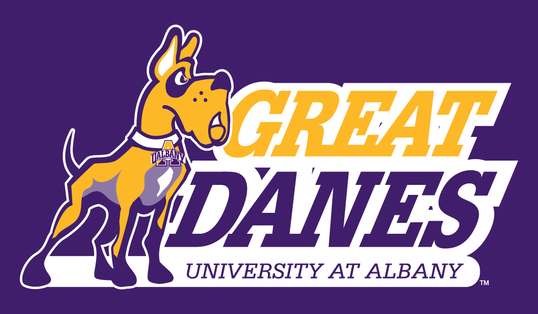 Albany Great Danes 2008-Pres Alternate Logo 04 iron on sticker