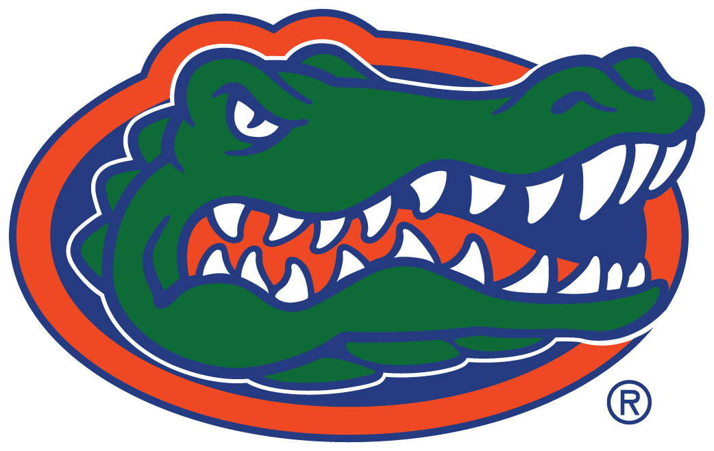 Florida Gators 2013-Pres Primary Logo iron on sticker
