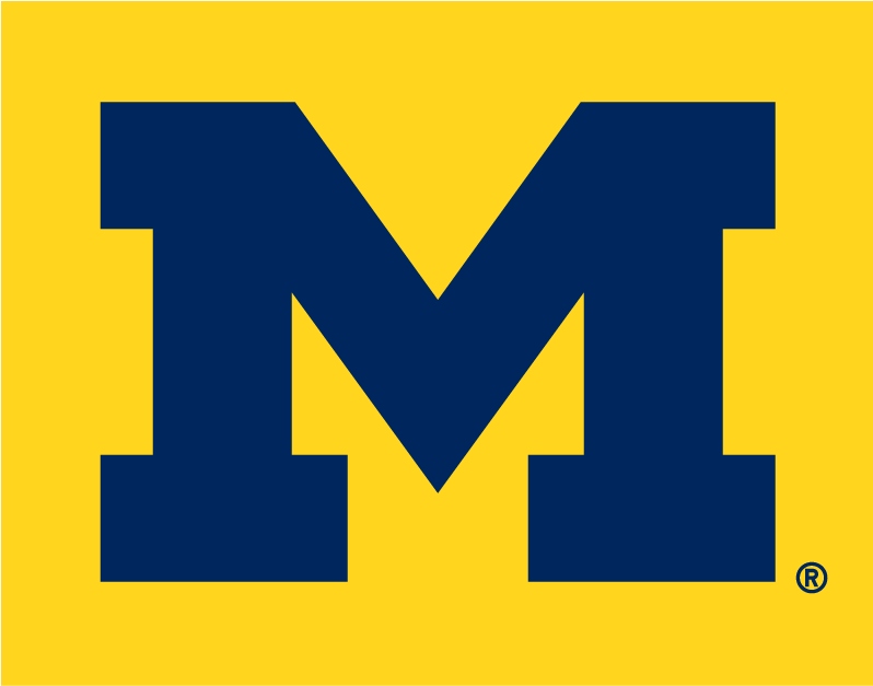 Michigan Wolverines 1996-Pres Alternate Logo 02 iron on sticker